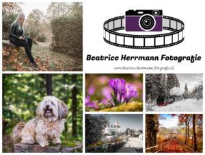 Herrmann_Banner
